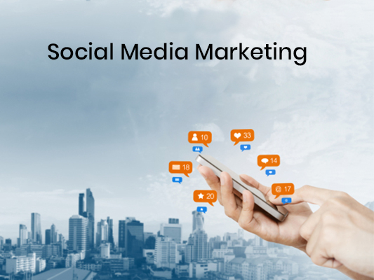 Use Social Media Marketing in Snohomish for Real Leads